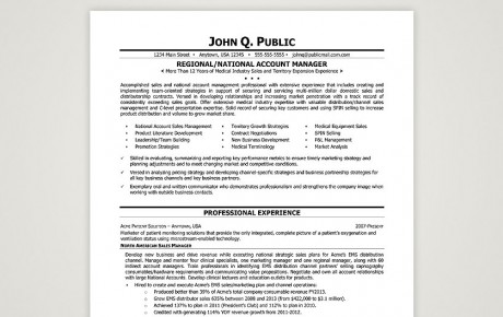Regional / National Account Manager  What Should A Professional Resume Look Like